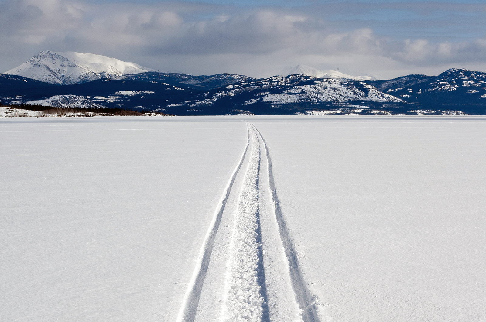 Snowmobile tracks in the Arctic.